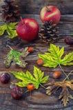 hojas de otoño de la Aún-vida Foto de archivo