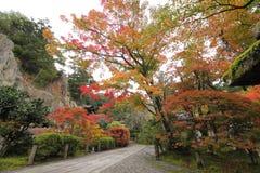 Hojas de otoño del templo de Natadera Kanazawa Japón fotos de archivo