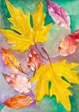 Hojas de otoño del Watercolour estación agradable del otoño elemento hermoso de la naturaleza Ilustración Imagenes de archivo