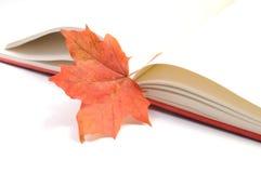 Hojas de otoño del wih del libro Fotografía de archivo libre de regalías