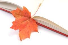 Hojas de otoño del wih del libro Foto de archivo libre de regalías