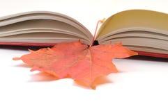 Hojas de otoño del wih del libro Imágenes de archivo libres de regalías
