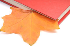 Hojas de otoño del wih del libro Fotos de archivo