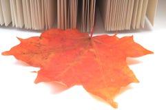 Hojas de otoño del wih del libro Imagen de archivo libre de regalías