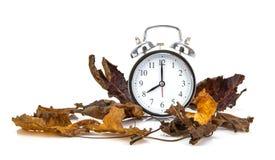 Hojas de otoño del wIIth del despertador del viejo estilo en blanco imagenes de archivo