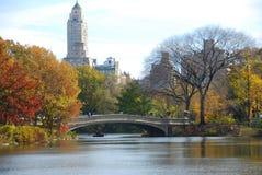 Hojas de otoño en el lago Foto de archivo libre de regalías