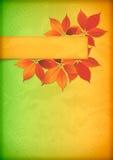Hojas de otoño en el papel arrugado viejo con la bandera Foto de archivo