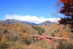 Hojas de otoño en el puente de East River en Kiyosato foto de archivo