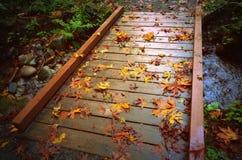Hojas de otoño en el puente de madera Imagen de archivo