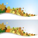 Hojas de otoño en el viento Fotografía de archivo