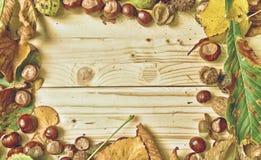 Hojas de otoño en fondo de madera Fotos de archivo libres de regalías