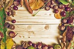 Hojas de otoño en fondo de madera Imagen de archivo