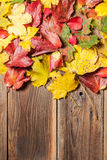 Hojas de otoño en la tabla Foto de archivo libre de regalías