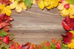 Hojas de otoño en la tabla Fotos de archivo libres de regalías