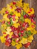 Hojas de otoño en la tabla Imagenes de archivo