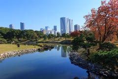 Hojas de otoño en los jardines de Hamarikyu, Tokio Imagen de archivo