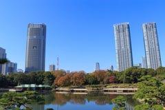 Hojas de otoño en los jardines de Hamarikyu, Tokio Imágenes de archivo libres de regalías