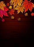 Hojas de otoño en tarjetas de madera Imagenes de archivo