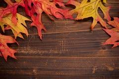 Hojas de otoño en un fondo de madera que forma una frontera Foto de archivo