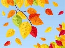 Hojas de otoño en un fondo del cielo azul. Enfermedad del vector stock de ilustración