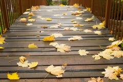 Hojas de otoño en un puente Imagen de archivo libre de regalías