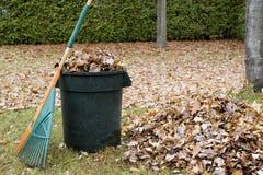 Hojas de otoño en una poder de basura - horizontal foto de archivo