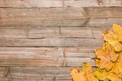 Hojas de otoño en una tabla Foto de archivo