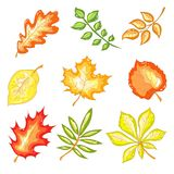 Hojas de otoño fijadas Foto de archivo libre de regalías
