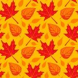 Hojas de otoño inconsútiles Fotografía de archivo