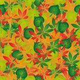 Hojas de otoño inconsútiles del fondo Imagen de archivo libre de regalías