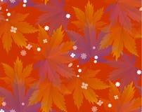 Hojas de otoño, modelo inconsútil, fondo del vector fotografía de archivo