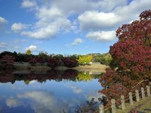 Hojas de otoño por el lago en parque Imagen de archivo