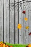 Hojas de otoño que caen delante de la cerca Fotos de archivo