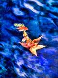 Hojas de otoño que flotan en el agua azul Imágenes de archivo libres de regalías