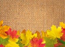 Hojas de otoño sobre el fondo de lino de la textura imágenes de archivo libres de regalías