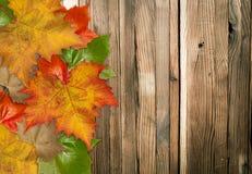Hojas de otoño sobre el fondo de madera Foto de archivo