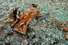 Hojas de otoño sobre el vidrio quebrado imagenes de archivo