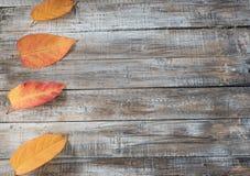 Hojas de otoño sobre fondo de madera Imagen de archivo libre de regalías