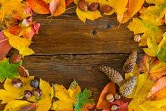 Hojas de otoño sobre fondo de madera imagen de archivo