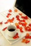 Hojas de otoño y computadora portátil Fotografía de archivo