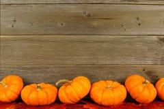 Hojas de otoño y frontera de la calabaza Imagen de archivo
