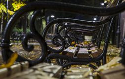 Hojas de otoño y gotas de agua en los bancos en el parque Imagen de archivo libre de regalías
