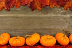 Hojas de otoño y marco de la calabaza Foto de archivo