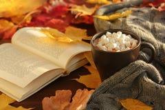 Hojas de otoño y taza del cacao Fotos de archivo