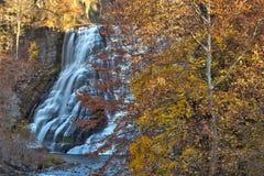 Hojas de otoño en Ithaca Falls en Nueva York rural Foto de archivo libre de regalías