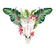 Hojas de palma bohemias del cráneo y del trópico de la vaca de la acuarela De occidental Foto de archivo libre de regalías