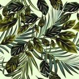 Hojas de palma del vector de la moda y modelo tropicales de la fruta cítrica ilustración del vector