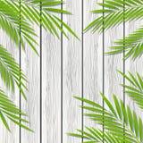 Hojas de palma en fondo de madera ilustración del vector