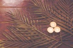 Hojas de palma en una superficie de madera Fotografía de archivo