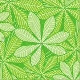 Hojas de palma en verde ilustración del vector